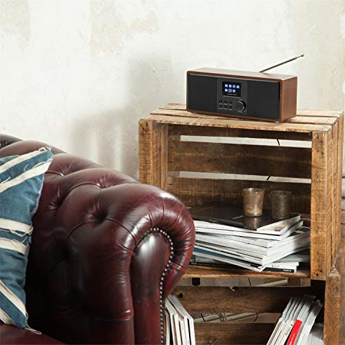 auna Connect 120 WN  Internetradio  Digitalradio  WLAN-Radio  Netzwerkplayer  DAB / DAB+ / UKW-Tuner mit RDS  Bluetooth  MP3-USB-Port  AUX-Eingang  Wecker  Sleep-Timer  TFT-Farbdisplay  Dimmfunktion  Uhrzeitanzeige  Holzfurnier  walnuss - 3